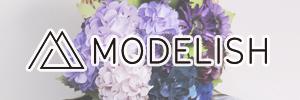 Modelish Style/モデリッシュスタイル